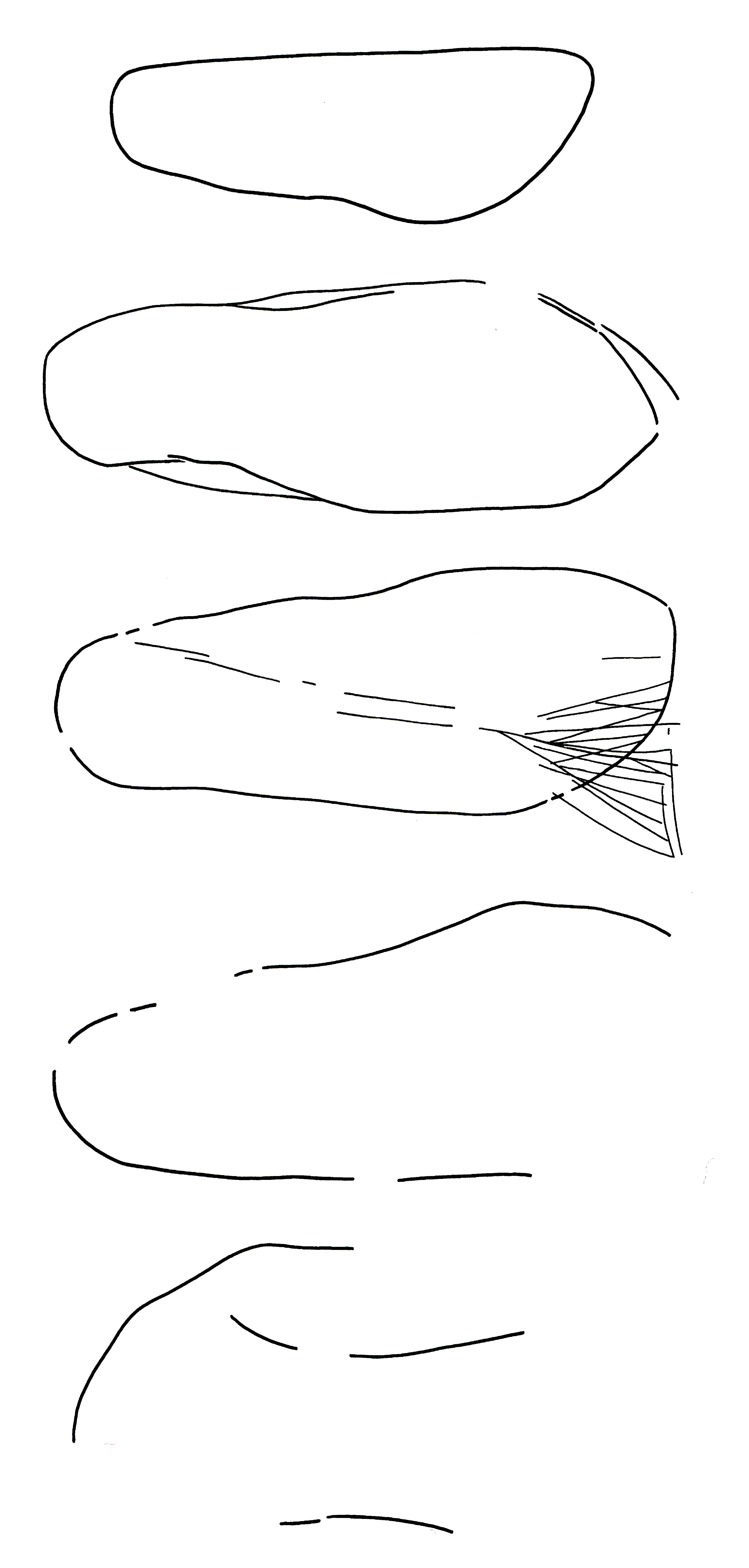 fig-1-large