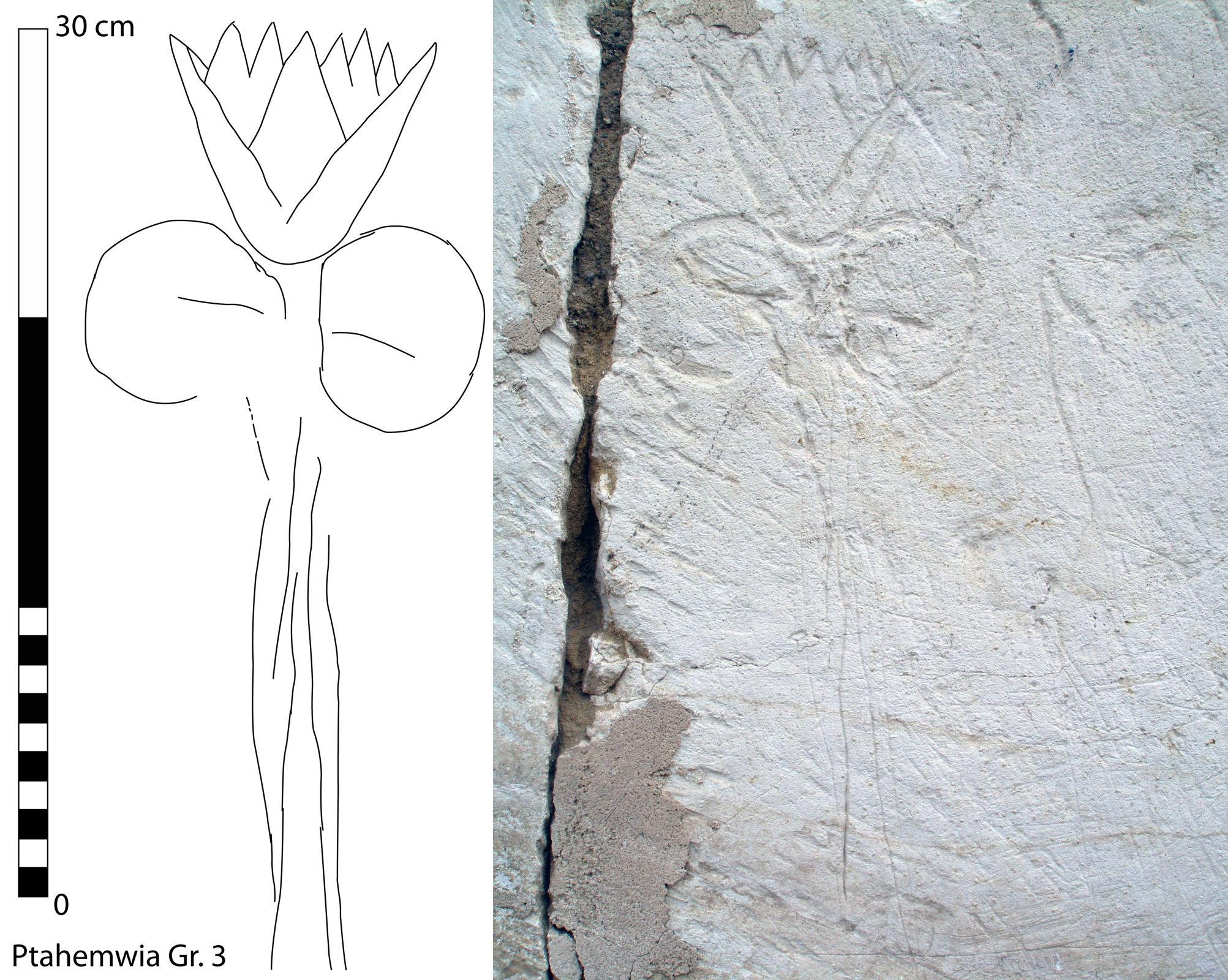 fig-14-large
