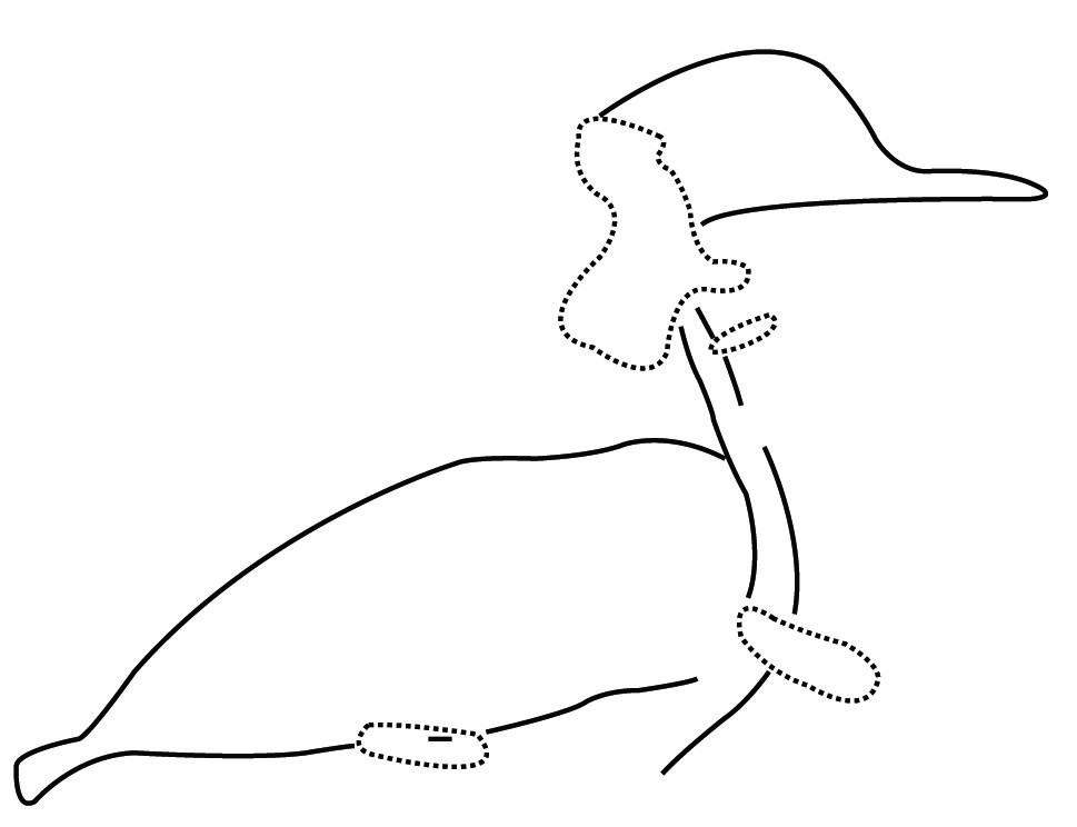 fig-20-large