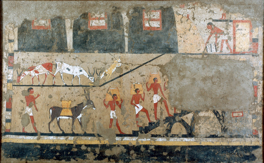 Wall painting from the tomb of Iti and Neferu, Gebelein, 1911 excavation. Museo Egizio, S. 14354/15. Photo by Nicola Dell'Aquila and Federico Taverni/Museo Egizio.