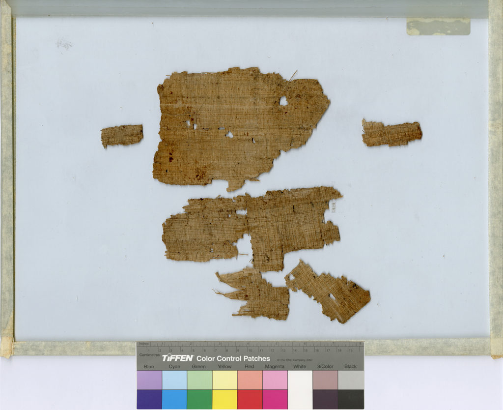 Verso of P. Turin Provv. 6133 as currently mounted. Scan by Museo Egizio.